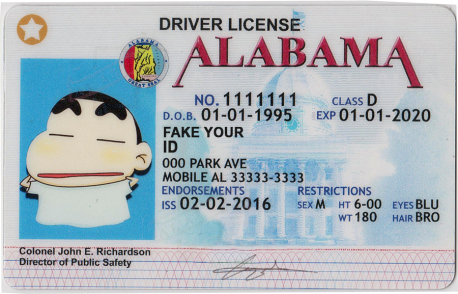 picture regarding Printable Fake Ids identify Alabama Identity