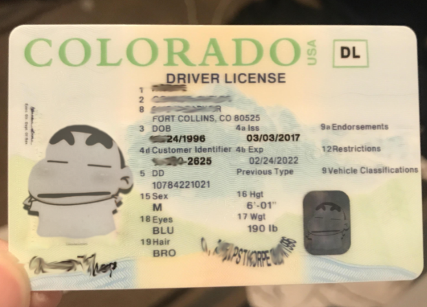 co drivers license out of state