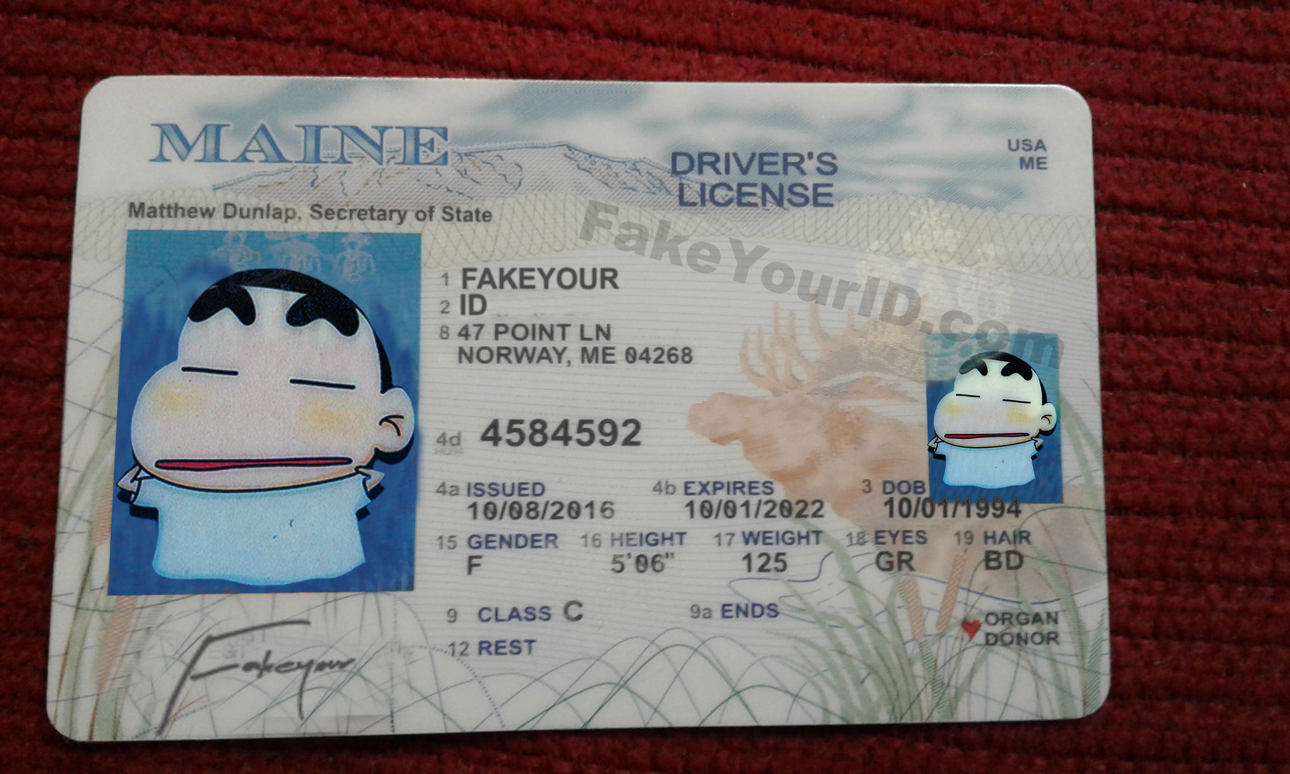 We Ids Fake Premium Buy Maine - Scannable Make Id