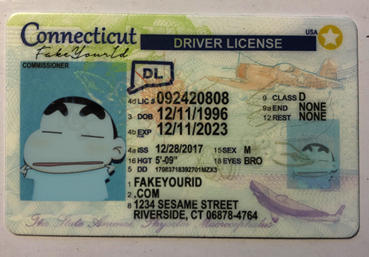 We Fake Buy - Connecticut Scannable Id Ids Premium Make