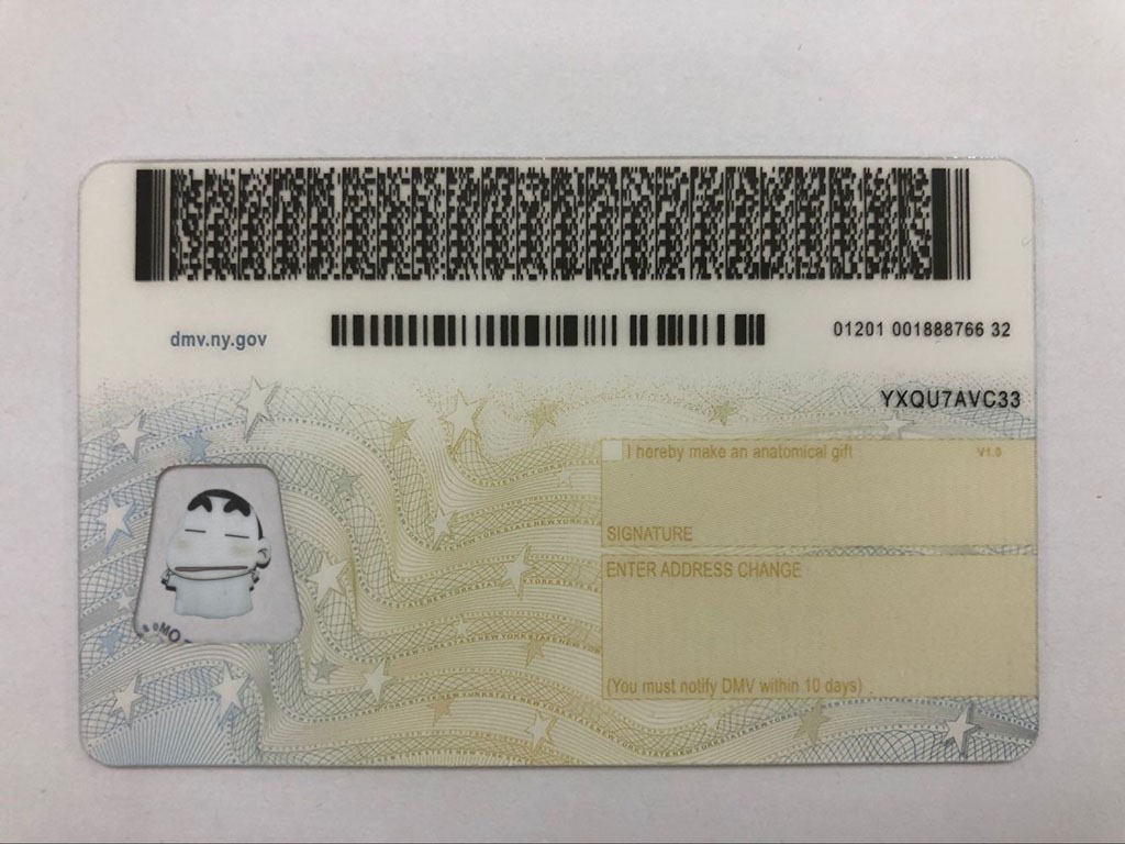 Buy New We Fake Premium - Ids Scannable Make Id York